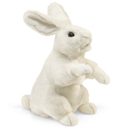 Rabbit, Standing White